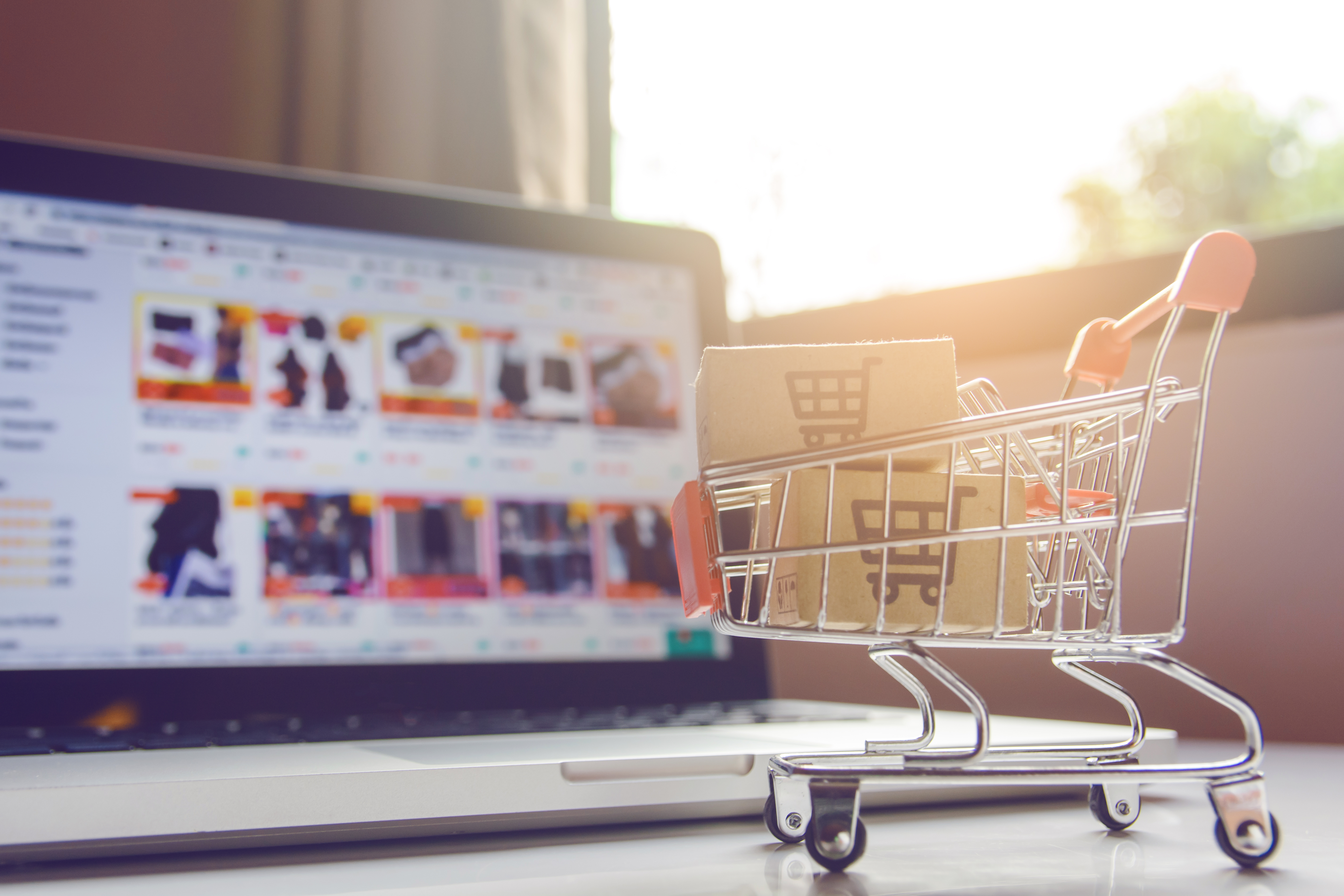 How to Set Up an E-Commerce Business in Vietnam