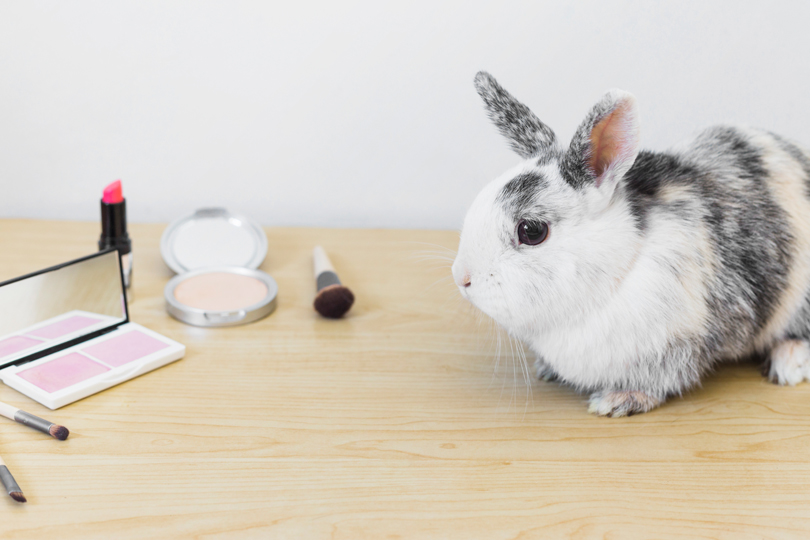 Australia's AICIS and Animal Testing Ban Commenced on July 1, 2020