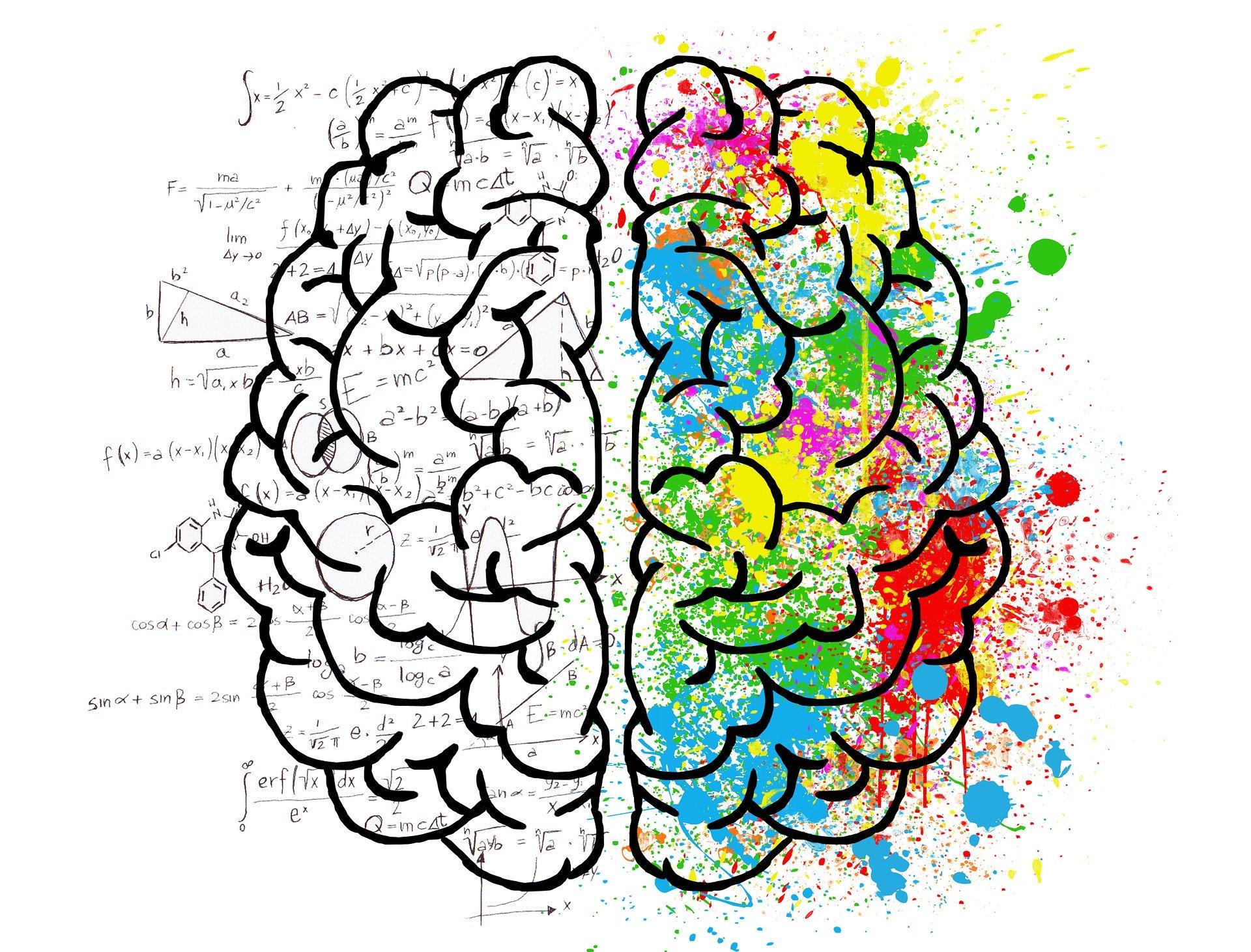 brain-2062057-1920-2.jpg