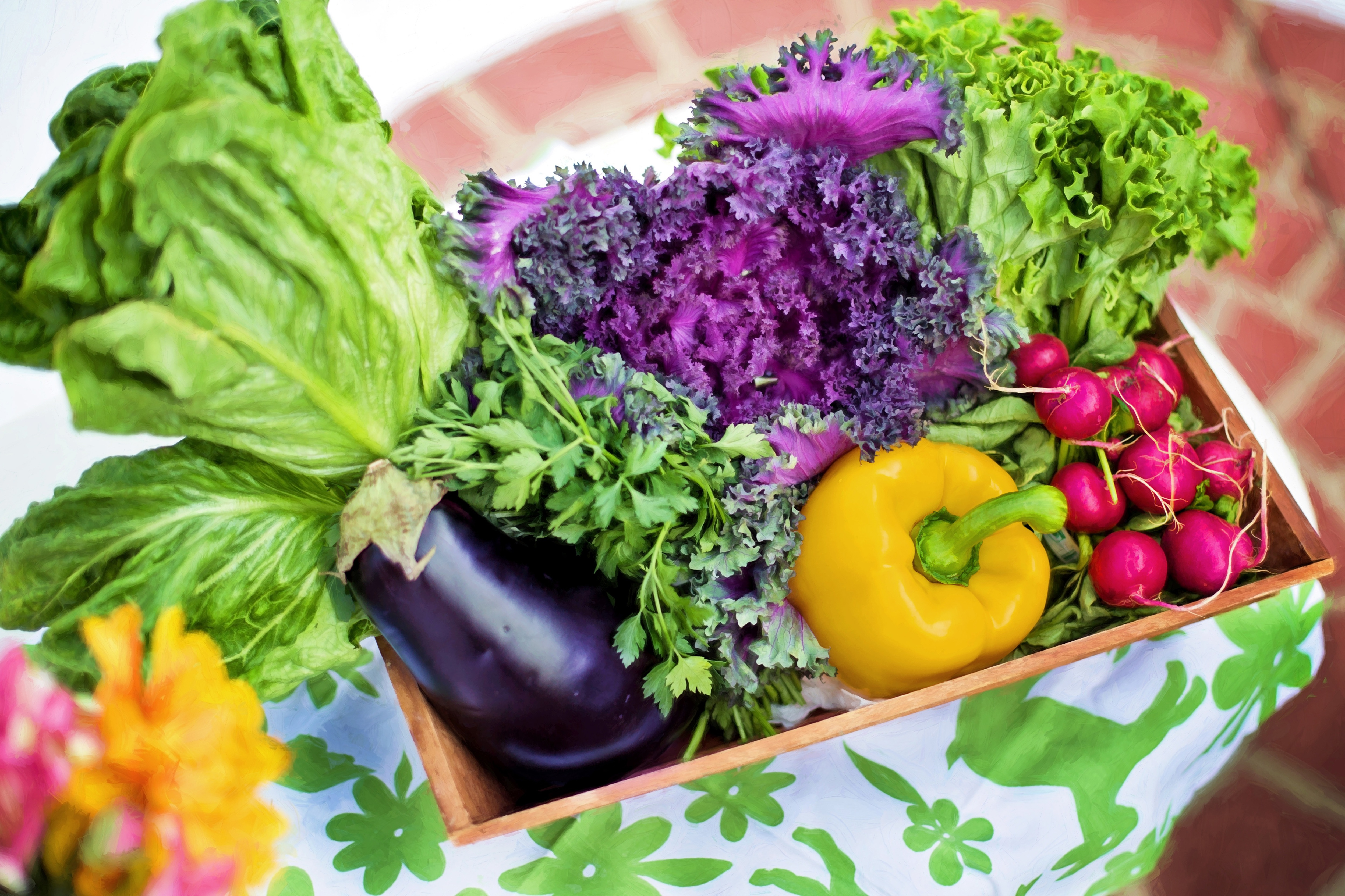 Taiwan and Australia Agree on Mutual Acceptance of Organic Food Certification
