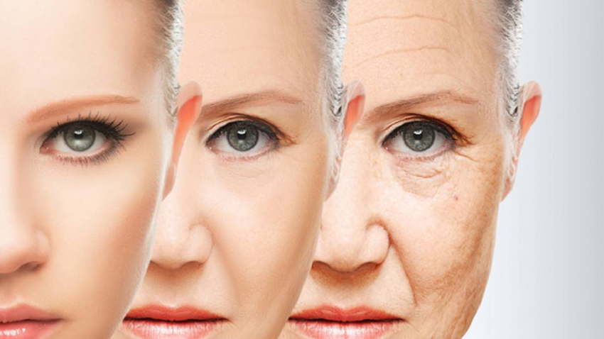 The Anti-aging Business in China