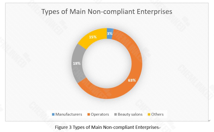 types of main non-compliant enterprises.png